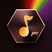 DJ音乐键盘 Pro - 专业dj电音&节奏混音器