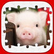 动物的益智游戏 ...