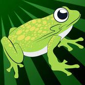 疯狂青蛙跳回报 - 新梦幻跳跃赛车游戏