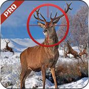 山狙击手猎鹿人2016年