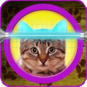 猫星术的应用程序:你的宠物的占星术 2