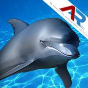 AR奇幻海豚表演 36893