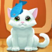 饿猫传说——猫...
