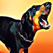 吠犬 - 人的声音最好的朋友在行动