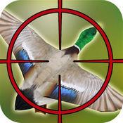 丛林猎鸟: 疯狂狩猎