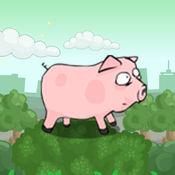 猪死腹 1