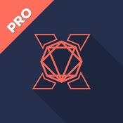 多角形 X Pro