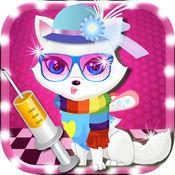 可爱的小猫猫宠物热起来的时尚打扮和 沙龙