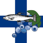芬兰食谱 3