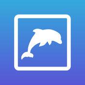 海洋动物。卡和测验 1.1