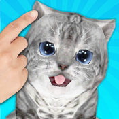快乐猫: Talking Cat Sounds 4