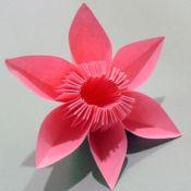 简单的折纸