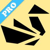 折纸Pro - 动画...
