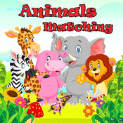 动物 匹配 难题 - 视线 游戏 对于 孩子们
