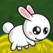 可爱的兔子山跳...