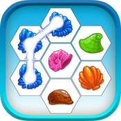 贝壳海滩海底贝壳 - 海奖赏
