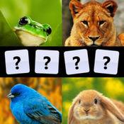 分辨动物声音: ...