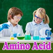 氨基酸的作用和功能详解
