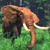 大象真正的冒险...