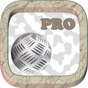 Rolly的球迷宫冒险 Pro