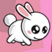 可爱的兔子仙人掌跳