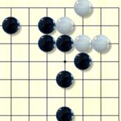 围棋官子大全 - 进阶业余5段的必备利器 1.1