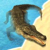 惊人的愤怒的鳄鱼