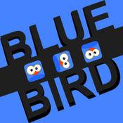 跳跃的蓝色鸟