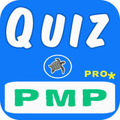 PMP PMBOK 5考试准备专业版