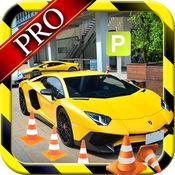城市停车场专业:学习驾驶狂热 1