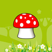 采蘑菇 20171