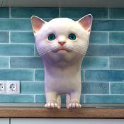 Cattery (猫舍)