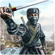 忍者战士英雄