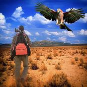真棒 鸟类 狩猎...
