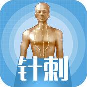 中医3D铜人 1