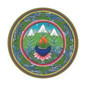 藏医药 1
