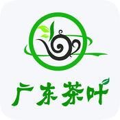 广东茶叶平台 6