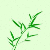 中国竹纤维网 1