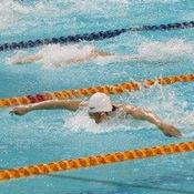 世界游泳赛模拟游戏 1.704