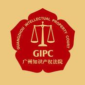 广州知识产权法...