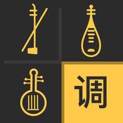 民乐调音大师 1