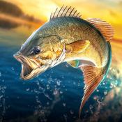 鱼钩:鲈鱼锦标赛...