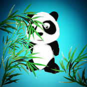 AR 熊猫