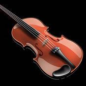 班德小提琴音准
