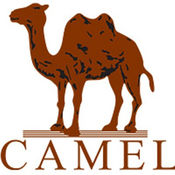 Camel 健康计步 1