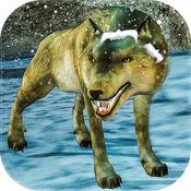 狼野生动物故事3...