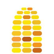 时间玉米 1
