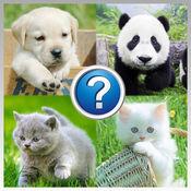 动物  测验狂热症 学习动物名称 1