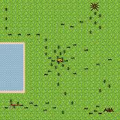 蚂蚁的生活