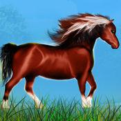 马poney野生敏捷种族:森林危险的道路 - 免费版